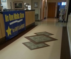 3N Flooring Replacement Medallion