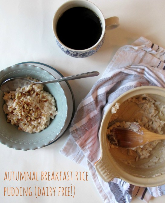 Autumnal Breakfast Rice Pudding (Dairy Free!)