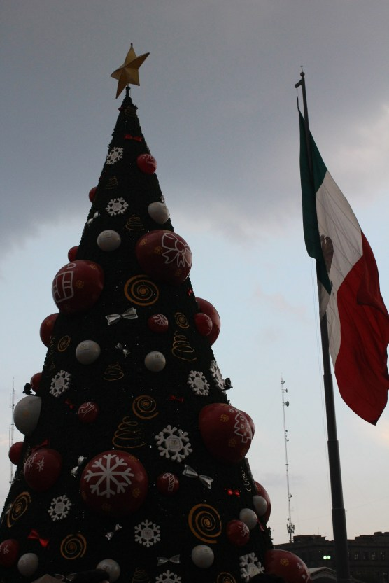 xmas tree at the Zocalo