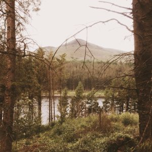A view of a beautiful lake through the trees with the peak of a hill on the horizon fading in to a gentle grey sky