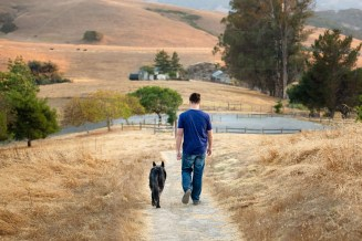 Pet Joy Session Photography Sonoma County