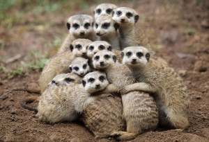 GROUP HUGS! :)