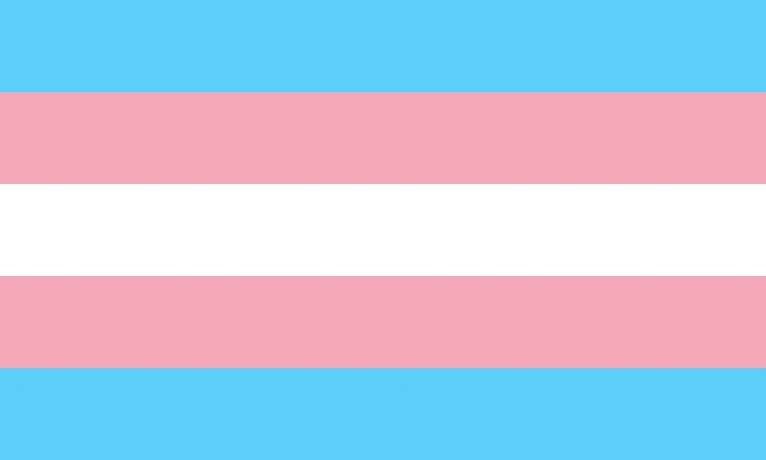 A blue, pink, and white striped flag. The transgender flag.