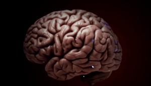 El caso Aaron Hernández: cuando juegues cuidado con tu cerebro