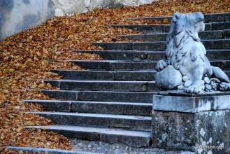autumn-2011-07