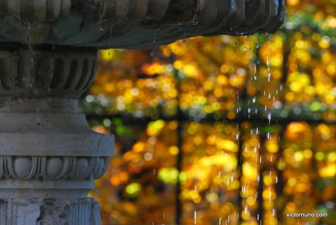 autumn-2011-30