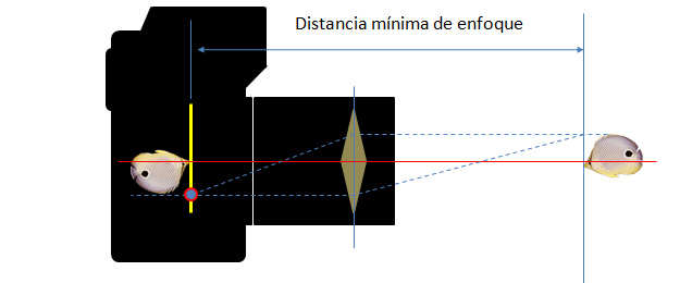 Macrofotografia: Tubos de Extensión (3/6)