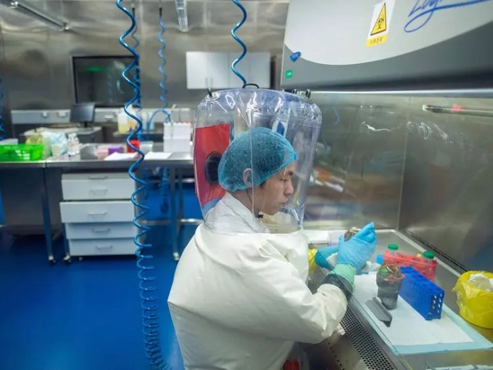 From inside the Wuhan Chinese Laboratory