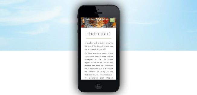 Mobile- Apple iPhone 5-healthy-living-ontos-website-design-company-vidaan
