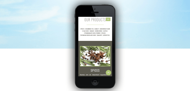 Mobile- Apple iPhone 5-product-page-responsive-website-by-vidaan