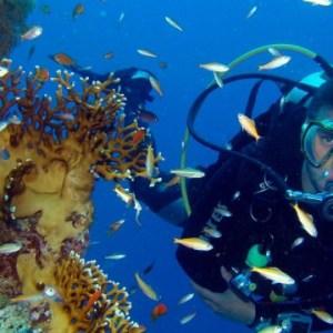 buceo-almeria-submarinista-inmersion-el-vapor
