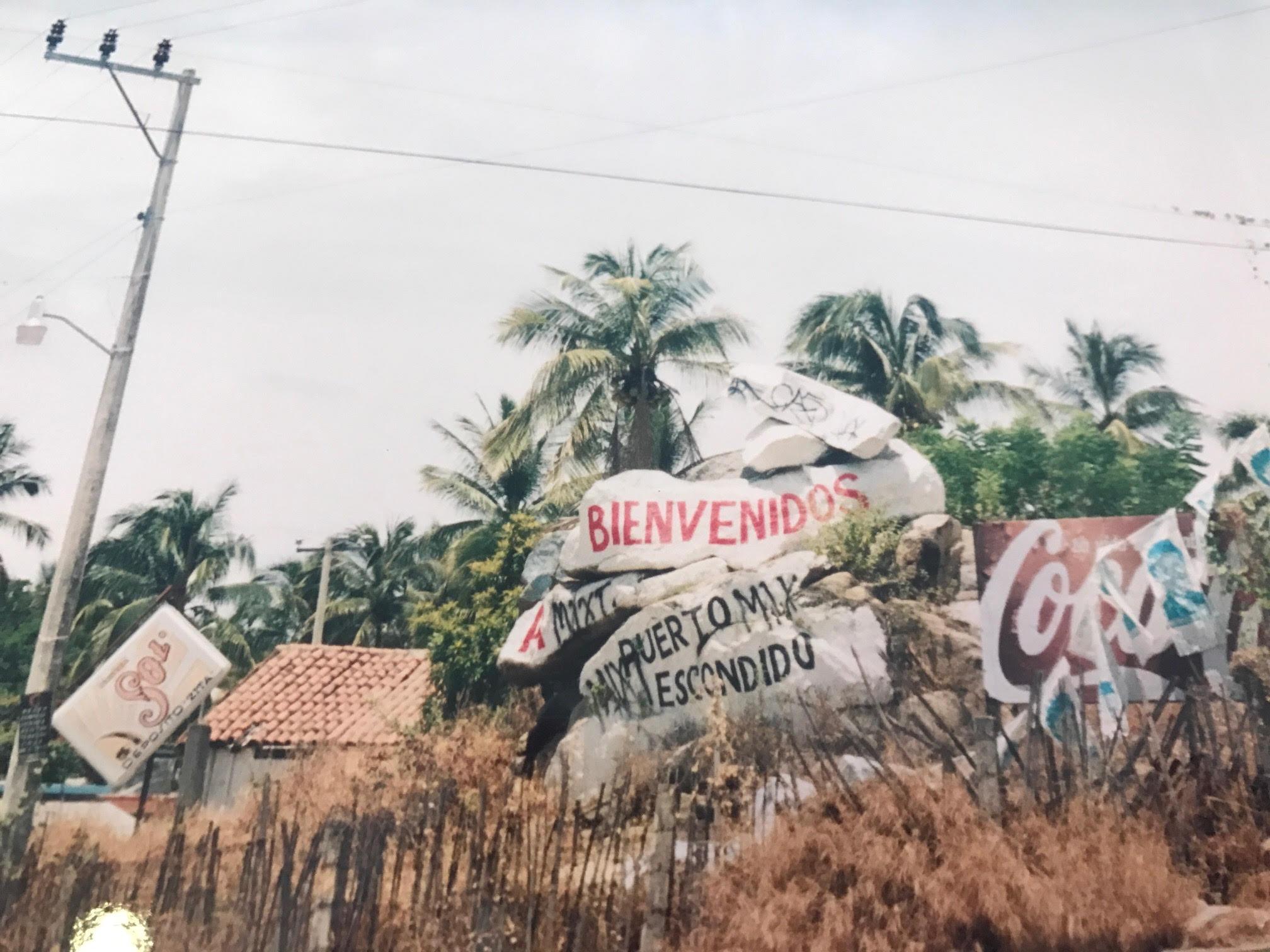 #miprimerhotel La iguana de Puerto Escondido