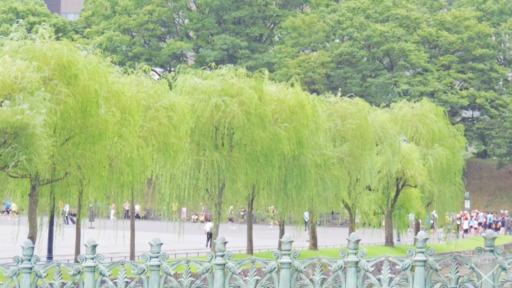 Tokyo_Imperial-palace