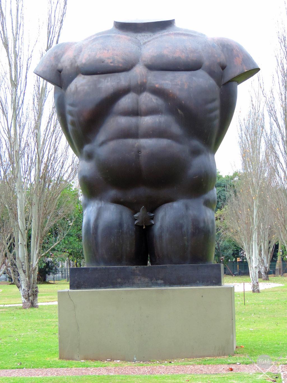 Buenos Aires - Torso Masculino desnudo