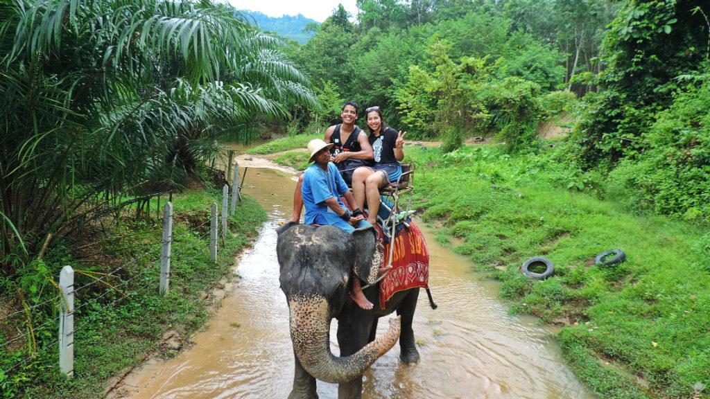 Thailand - Phuket - Safari Island Elephant Trekking 3 - Vida de Tsuge - VDT - 1024x576