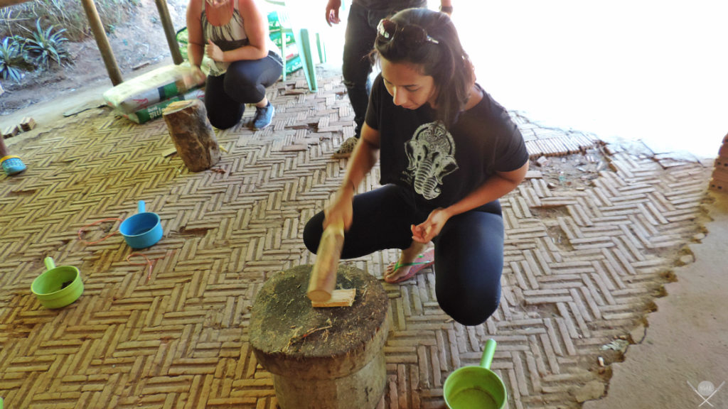 Thailand - Chiang Mai - Banho Elefante 2 - Viagens - Vida de Tsuge - VDT