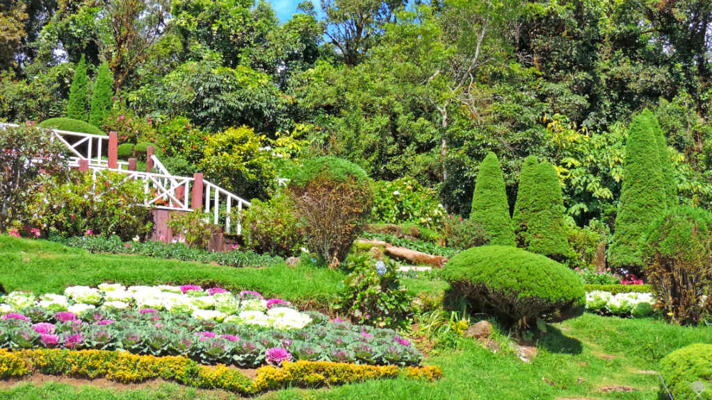 Thailand - Chiang Mai - Jardim Doi Inthanon 1 - Viagens - Vida de Tsuge - VDT