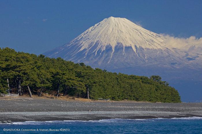 Shimizu_Shizuoka_Japão_Roteiro-20-dias-no-Japão_Next-Stop-Japão_Vida-de-Tsuge_VDT