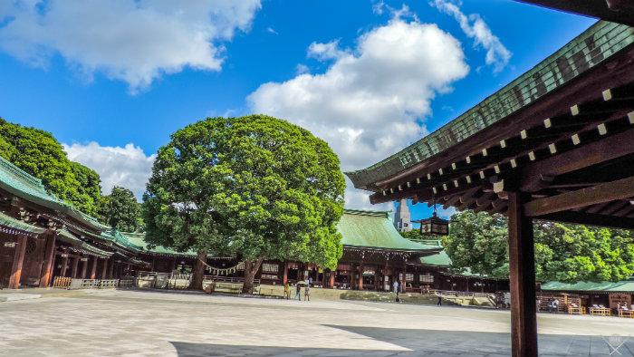 Tokyo_Meiji_Jingu_Shrine_Japão_Roteiro-20-dias-no-Japão_Next-Stop-Japão_Vida-de-Tsuge_VDT