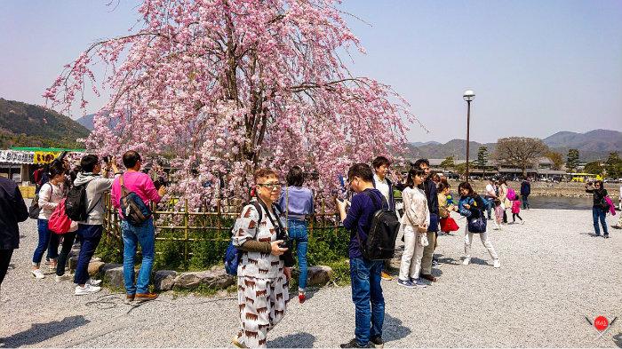 arashiyama-park_3_arashiyama_viagem-pro-japao_vida-de-tsuge_vdt