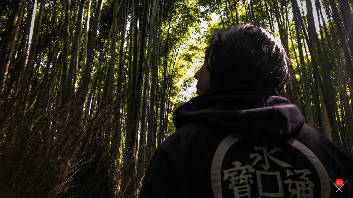 bamboo-forest_2_arashiyama_viagem-pro-japao_vida-de-tsuge_vdt