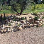 Tumulus minéral en pied d'olivier avec rocher, enrochement, gallet et gravier, mise en place de petites plantes et décoration minérale.