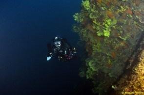 Ullastres III es básicamente una inmersión de pared por Miquel Pontes