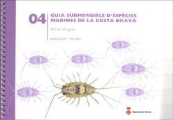 Guia submergible d'espècies marines de la Costa Brava: Arran d'aigua