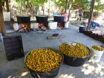 Papaya preserves cooking, and more fruit waiting
