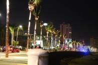 SECTUR photo of the lit palm trees on the malecón of Mazatlán