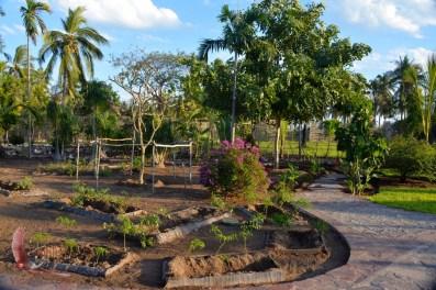 Pathways in the Botanic Garden