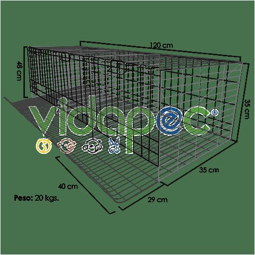 JPGP0201002-512x512