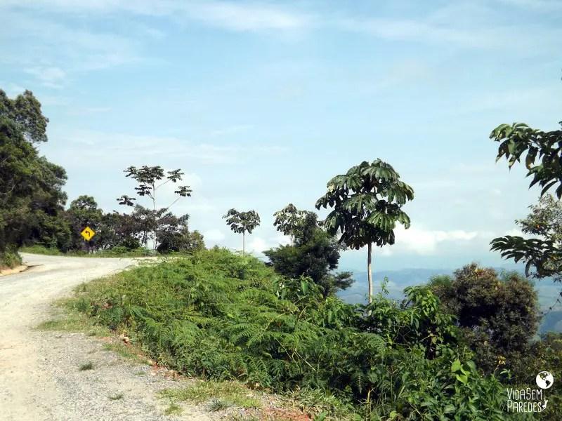 Estrada de acesso à portaria do parque