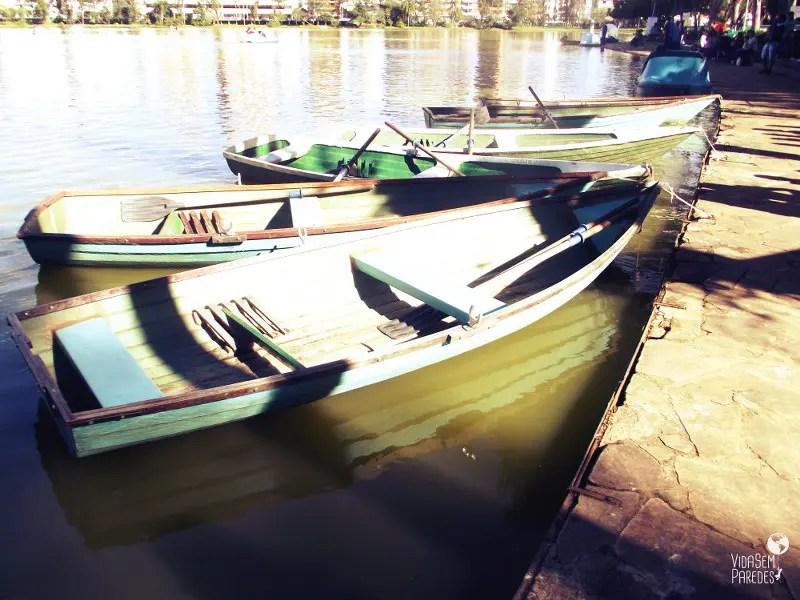 Vida sem Paredes - Parque das Águas São Lourenço (11)