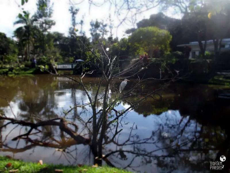 Vida sem Paredes - Parque das Águas São Lourenço (13)