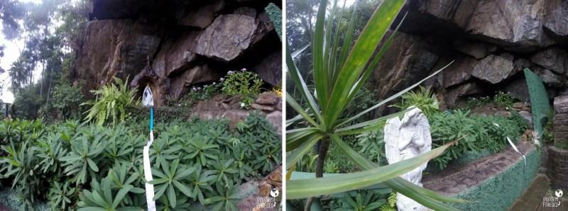 Vida sem Paredes - Santuário Ecológico da Água Santa (2)