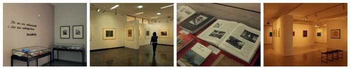 museus gratuitos em Juiz de Fora: MAMM