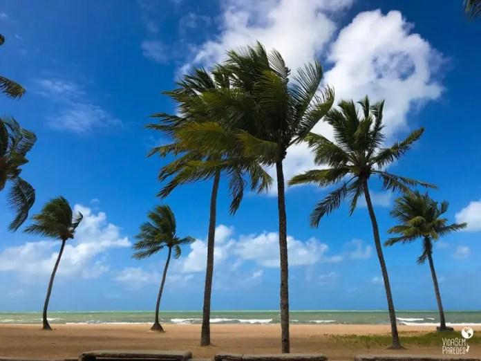 Melhores atrações para visitar em Recife: praia da Boa Viagem