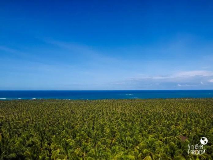 praias do frances gunga e maragogi