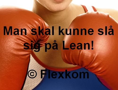 Lean ledelse - man skal kunne slå sig på Lean!