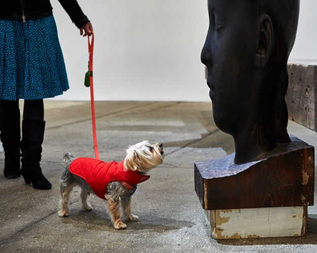 1502982468342-dOGUMENTA-image-7 Doggone Cute Pics From America's First Art Show for Dogs Art