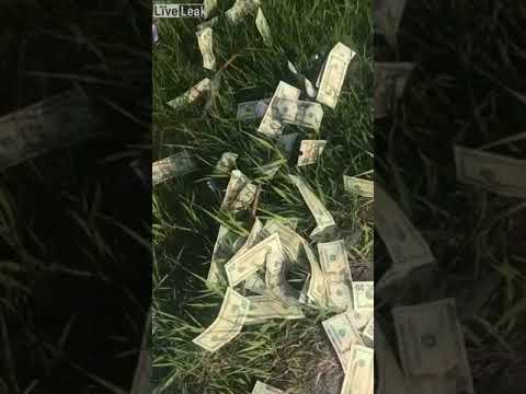 آلاف الدولارات الملقاة بطريق سريع تثير حيرة المارة