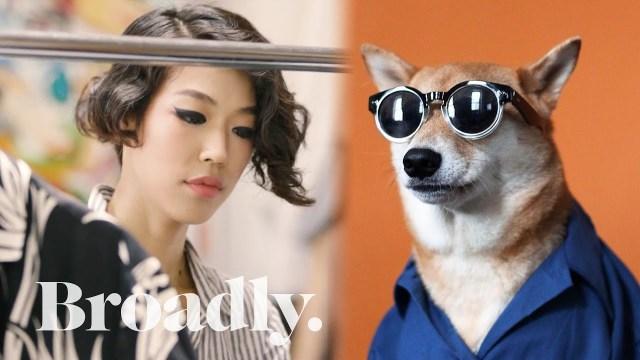 الكلب بودي .. عارض أزياء يحقق 140 ألف جنيه إسترليني سنويا