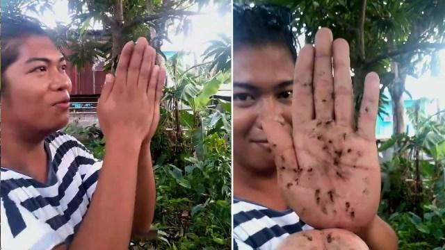 رجل ينفذ خدعة غريبة لصيد البعوض بيديه