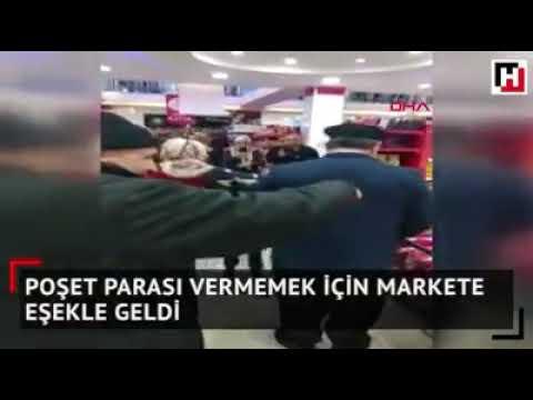 الحمار يدخل السوبر ماركت في تركيا