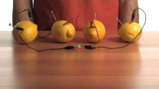 Fruit-Power Battery – Sick Science! #080