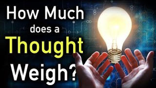 How Much Does a Thought Weigh?