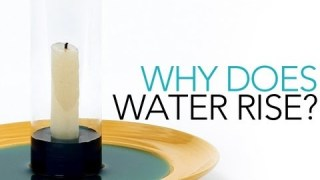 Why Does Water Rise? – Sick Science! #001