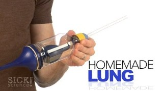 Homemade Lung – Sick Science! #181