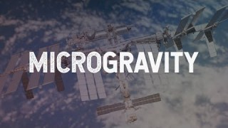 NASA Explorers: Microgravity